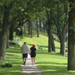 couple walking down a tree lined path